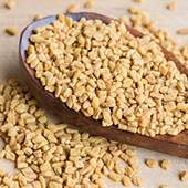 Image of Fenugreek on a Wooden Spoon